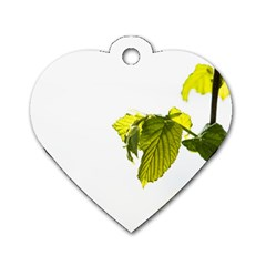 Leaves Nature Dog Tag Heart (two Sides)