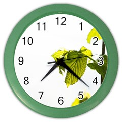 Leaves Nature Color Wall Clocks