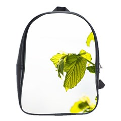 Leaves Nature School Bags(large)
