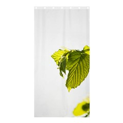 Leaves Nature Shower Curtain 36  X 72  (stall)