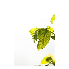 Leaves Nature Shower Curtain 48  X 72  (small)