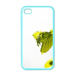 Leaves Nature Apple Iphone 4 Case (color)
