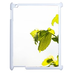Leaves Nature Apple Ipad 2 Case (white)