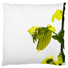 Leaves Nature Large Cushion Case (one Side)