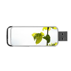 Leaves Nature Portable Usb Flash (two Sides)