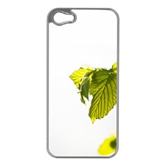 Leaves Nature Apple Iphone 5 Case (silver)