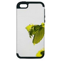 Leaves Nature Apple Iphone 5 Hardshell Case (pc+silicone)