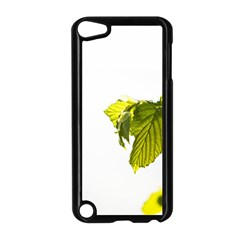 Leaves Nature Apple iPod Touch 5 Case (Black)