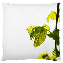 Leaves Nature Standard Flano Cushion Case (two Sides)