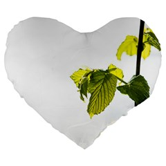 Leaves Nature Large 19  Premium Flano Heart Shape Cushions