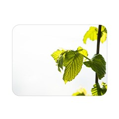 Leaves Nature Double Sided Flano Blanket (mini)