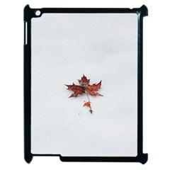 Winter Maple Minimalist Simple Apple iPad 2 Case (Black)