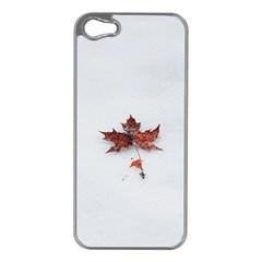 Winter Maple Minimalist Simple Apple Iphone 5 Case (silver)