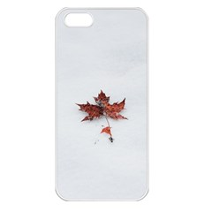 Winter Maple Minimalist Simple Apple Iphone 5 Seamless Case (white)