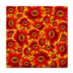 Gerbera Flowers Nature Plant Tile Coasters