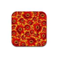 Gerbera Flowers Nature Plant Rubber Square Coaster (4 Pack)