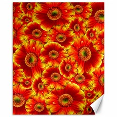 Gerbera Flowers Nature Plant Canvas 11  X 14