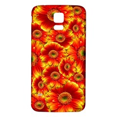 Gerbera Flowers Nature Plant Samsung Galaxy S5 Back Case (White)