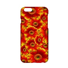 Gerbera Flowers Nature Plant Apple Iphone 6/6s Hardshell Case