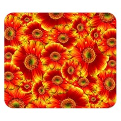 Gerbera Flowers Nature Plant Double Sided Flano Blanket (small)