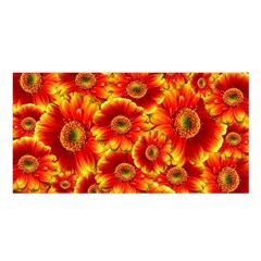 Gerbera Flowers Nature Plant Satin Shawl