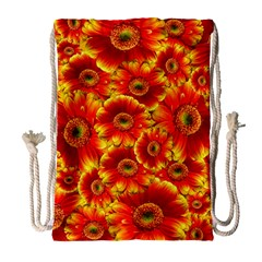 Gerbera Flowers Nature Plant Drawstring Bag (large)