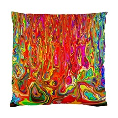 Background Texture Colorful Standard Cushion Case (one Side)