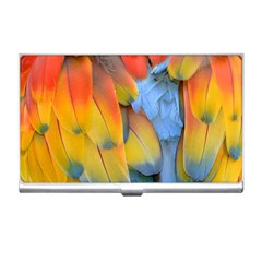 Spring Parrot Parrot Feathers Ara Business Card Holders