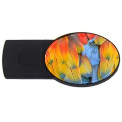 Spring Parrot Parrot Feathers Ara Usb Flash Drive Oval (4 Gb)