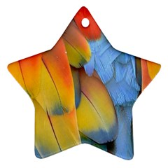 Spring Parrot Parrot Feathers Ara Star Ornament (Two Sides)