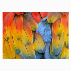 Spring Parrot Parrot Feathers Ara Large Glasses Cloth (2 Side)