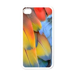 Spring Parrot Parrot Feathers Ara Apple Iphone 4 Case (white)