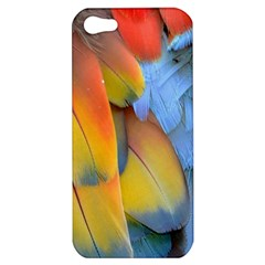 Spring Parrot Parrot Feathers Ara Apple iPhone 5 Hardshell Case