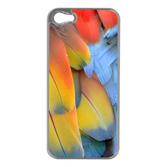 Spring Parrot Parrot Feathers Ara Apple Iphone 5 Case (silver)