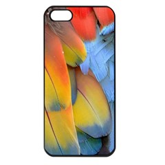 Spring Parrot Parrot Feathers Ara Apple Iphone 5 Seamless Case (black)