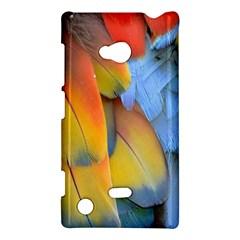 Spring Parrot Parrot Feathers Ara Nokia Lumia 720