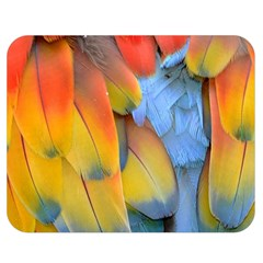 Spring Parrot Parrot Feathers Ara Double Sided Flano Blanket (medium)