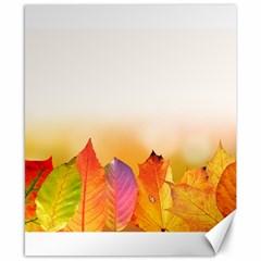 Autumn Leaves Colorful Fall Foliage Canvas 8  X 10