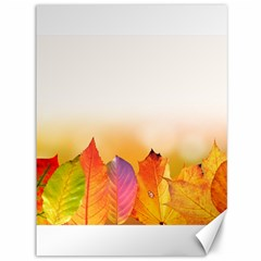 Autumn Leaves Colorful Fall Foliage Canvas 36  X 48