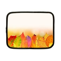 Autumn Leaves Colorful Fall Foliage Netbook Case (small)