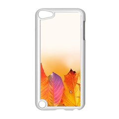 Autumn Leaves Colorful Fall Foliage Apple Ipod Touch 5 Case (white)