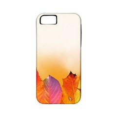 Autumn Leaves Colorful Fall Foliage Apple Iphone 5 Classic Hardshell Case (pc+silicone)