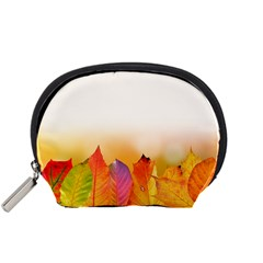 Autumn Leaves Colorful Fall Foliage Accessory Pouches (small)