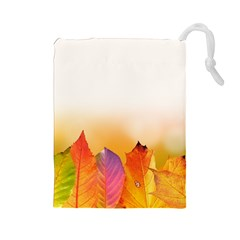Autumn Leaves Colorful Fall Foliage Drawstring Pouches (large)
