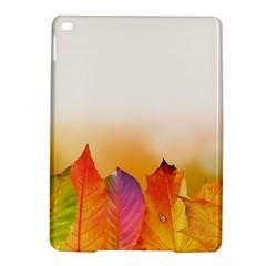 Autumn Leaves Colorful Fall Foliage Ipad Air 2 Hardshell Cases