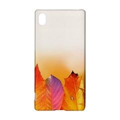 Autumn Leaves Colorful Fall Foliage Sony Xperia Z3+