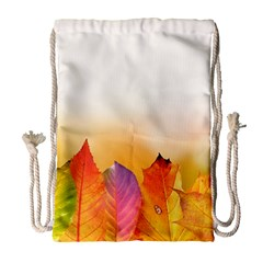 Autumn Leaves Colorful Fall Foliage Drawstring Bag (Large)