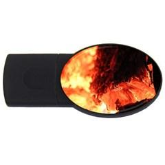 Fire Log Heat Texture Usb Flash Drive Oval (4 Gb)