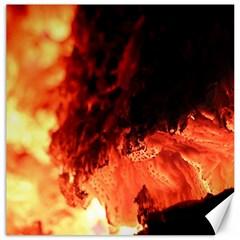 Fire Log Heat Texture Canvas 16  X 16