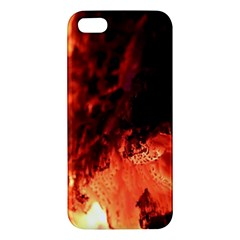 Fire Log Heat Texture Apple Iphone 5 Premium Hardshell Case